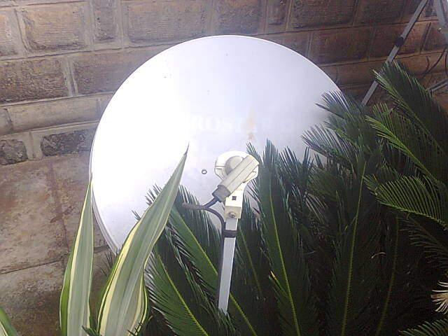 DStv dish no signal