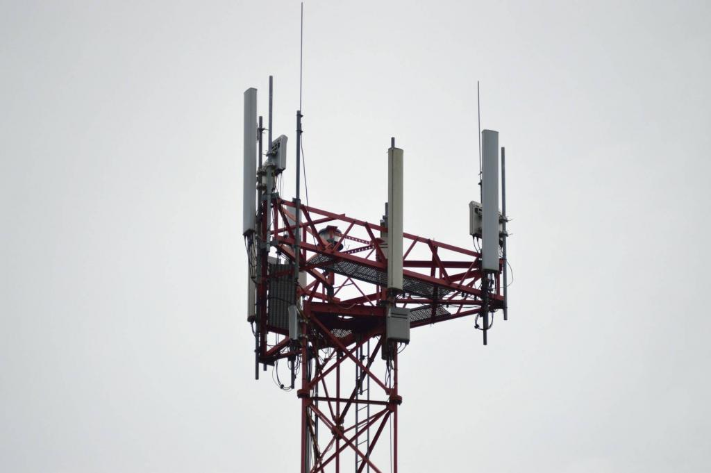 dstv no signal